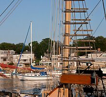 Formidable Mast by phil decocco