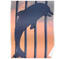 Dolphin on the Grid Poster
