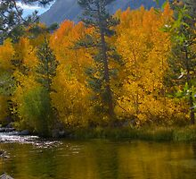 Bishop CA. North Fork Bishop Creek Fall by photosbyflood