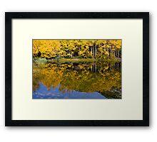 Bishop CA Falls Golden Reflection Framed Print