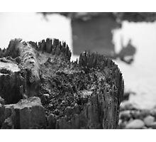 Slow Salt Decay Photographic Print