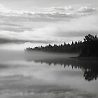 Misty Morning - Adams Lake BC by frame-by-frame