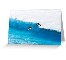 Adelie Penguin  Leap of Faith Greeting Card