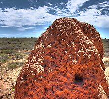 White Ant Castle, Cape Range, WA by BigAndRed
