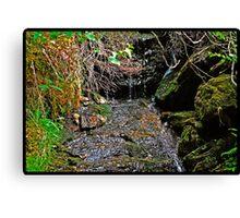 Water Drops HDR Canvas Print