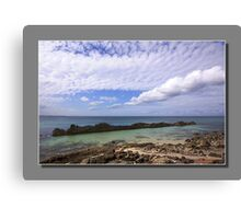 rocky forster  Canvas Print