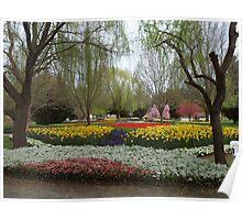 Tulip Tops Gardens Yet Again. Poster