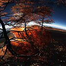 Island of Dreams - Panorama by MaxSteinwald