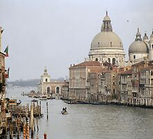 The Picture Postcard Venice by Tiffany Dryburgh
