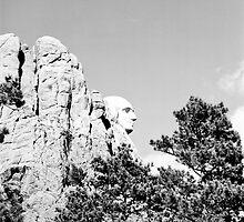 Washington hiding by Blake  Hyland