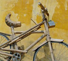 Wooden Bicycle by Brian Puckey