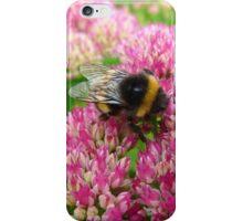 Bumble Bee on the Sedum iPhone Case/Skin