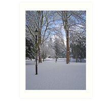Tranquil snow scene Art Print