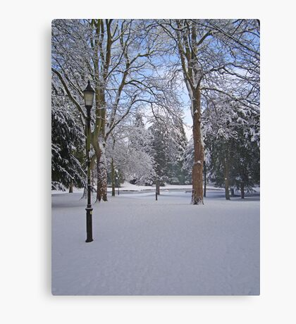 Tranquil snow scene Canvas Print