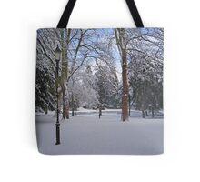Tranquil snow scene Tote Bag