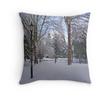 Tranquil snow scene Throw Pillow