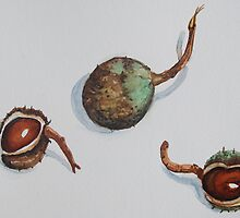 Three Chestnuts by Geraldine M Leahy