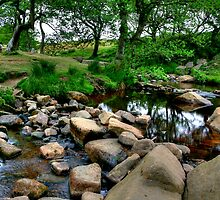 """That Peaceful, Restful Feeling"" by Bradley Shawn  Rabon"