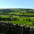 Nidderdale by mousesuzy