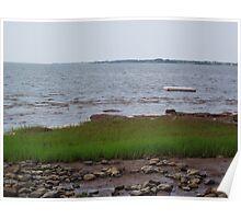 Marshland at River John Poster
