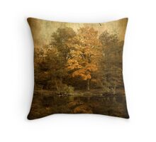 Gentle Reflection Throw Pillow