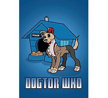 Dogtor Who 11 Photographic Print