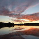 Dreamy Sunset- Silver Lake  by Tracy Wazny