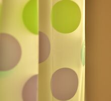 Polka Dot Curtain by Kim McClain Gregal