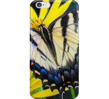 Yellow Swallowtail Butterfly iPhone Case/Skin