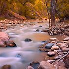 Zion National Park by Vincent James