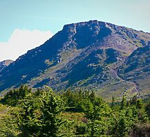 Flattop Mountain by Amber Hathaway