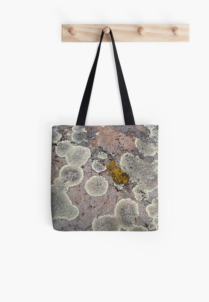 Lichens on Montana Granite by May Lattanzio