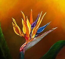 Bird of Paradise flower by Zina Stromberg