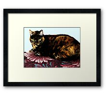 low key Zoe Framed Print