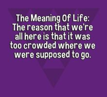 The Meaning Of Life: The reason that we're all here is that it was too crowded where we were supposed to go. by margdbrown