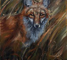 Red in the Reeds - Red Fox by john mcfaul