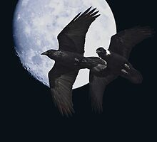 Night of the Ravens by Wingsdomain Art and Photography