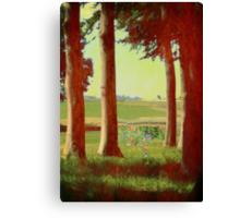 Daisy's in the field Canvas Print