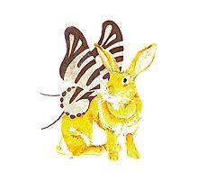 Elf Bunnyfly Photographic Print