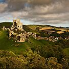 Sunlight shines on Corfe castle  by Shaun Whiteman