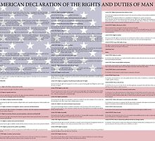 American Declaration of the Rights and Duties of Man Light Background by wetdryvac
