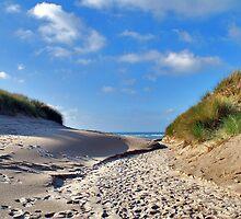 Sandy path by Adri  Padmos