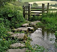 Path & Stream by Julesrules