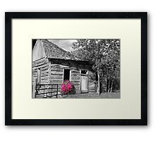Hint of Pink Framed Print