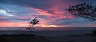 Swell sunrise sans sculptures by Odille Esmonde-Morgan