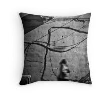 OnePhotoPerDay Series: 272 by C. Throw Pillow