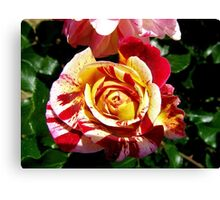 Elegance in Red & Yellow  Canvas Print