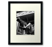 CAUGHT ... Framed Print