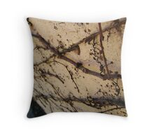 Clinging On Throw Pillow