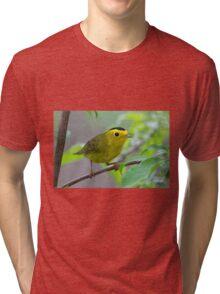 Wilson's Warbler Tri-blend T-Shirt